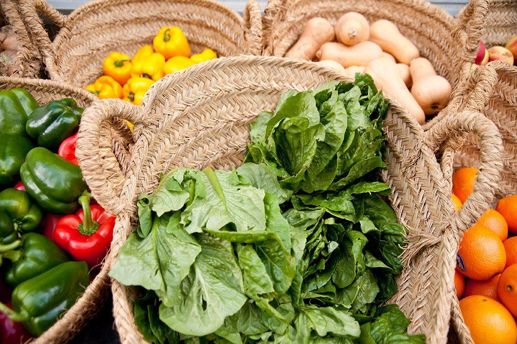 農業×福祉=「農福連携」新たな形で障がい者の可能性を発揮!その相乗効果とは?