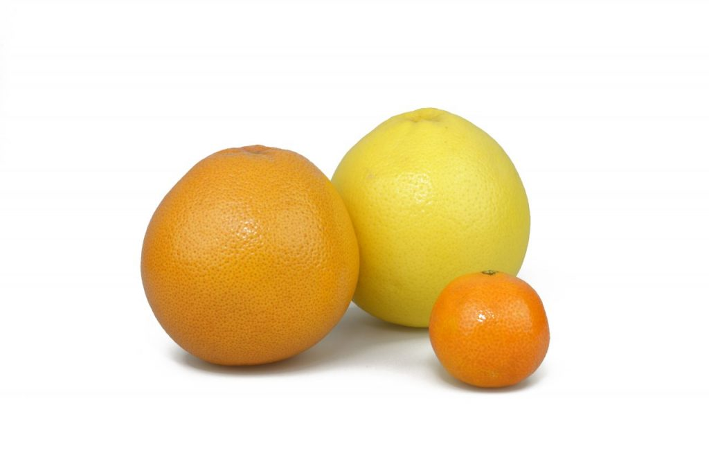 storm-0914-fruit-032