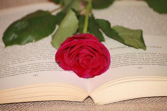 World Book Day!4月23日は「世界 本の日」。知的でロマンチックな記念日