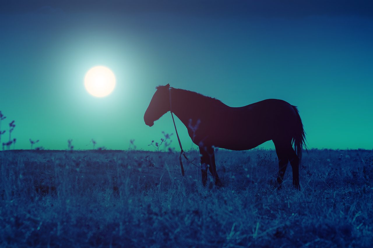 世界中を優しい青い光で包む『ライト・イット・アップ・ブルー』