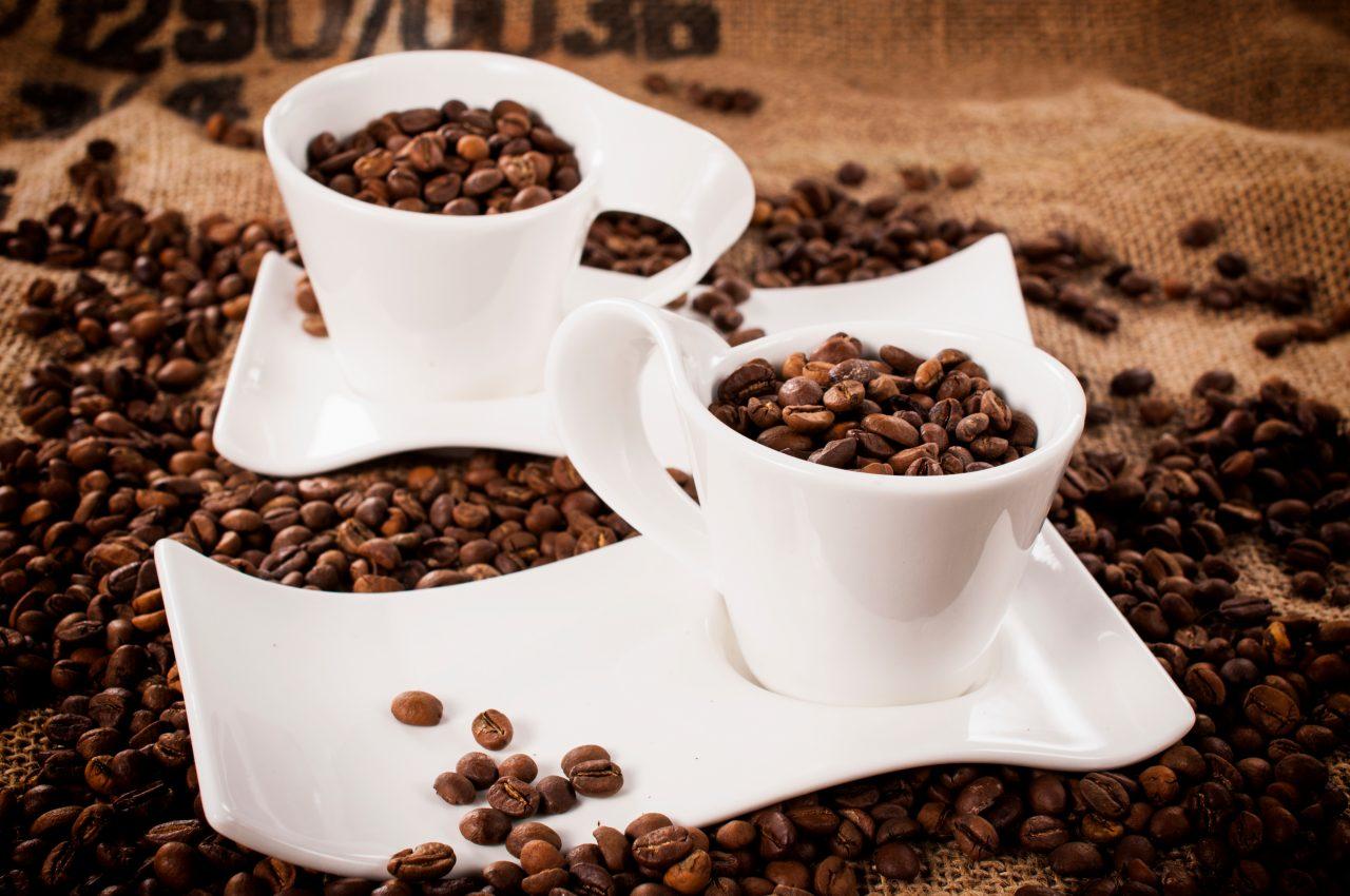 フェアトレードのコーヒー豆をあなたは買いますか?