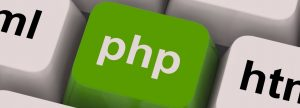 php-programming-key-shows-internet-development-language_g1tv8fw_-1
