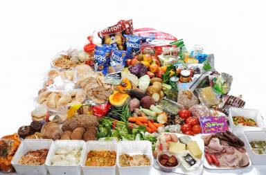 42-4_kg_of_food_found_in_new_zealand_household_rubbish_bins