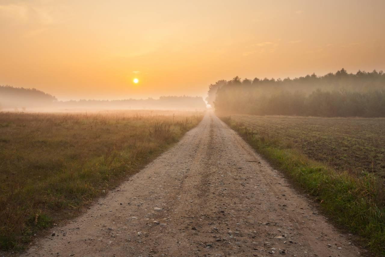 障害を受け入れる難しさ、一歩を踏み出す大切さ。