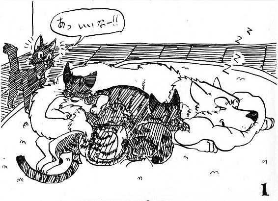 猫の手洗い。