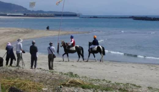 全国でも珍しい 海岸線を馬が疾走〜串木野浜競馬・鹿児島〜