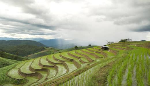 棚田、伝統ある稲作農業の芸術