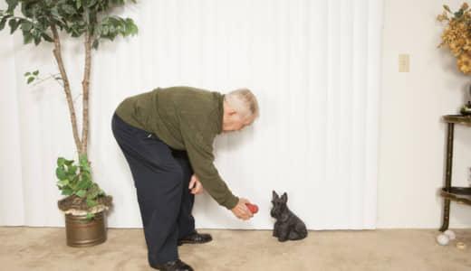 男性高齢者の15%「会話が2週間に1回以下」