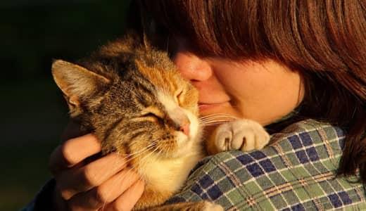 8月8日「世界 猫の日」猫と人間の歴史は1万年!!