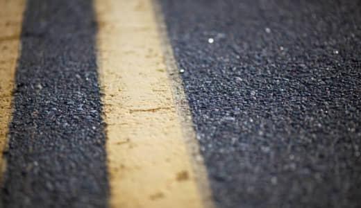 道端でひっくり返ってるセミが死んでるかどうかを見分ける方法