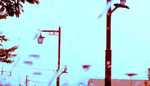 一滴ずつ落ちるコーヒーと苦い涙
