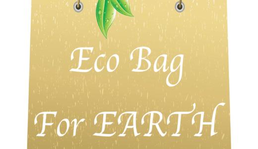 レジ袋の有料化!エコバッグの使用、あなたはどう対処する?